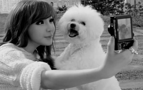 5 Productos de belleza coreanos no probados en animales que amarás